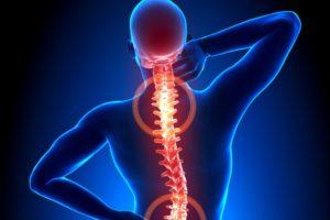 come-proteggere-la-colonna-vertebrale_58abe36ec808ea39e76e0a2d5ea3c3aa-1024x682