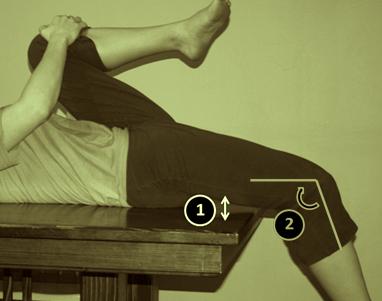 muscoli del bacino prova