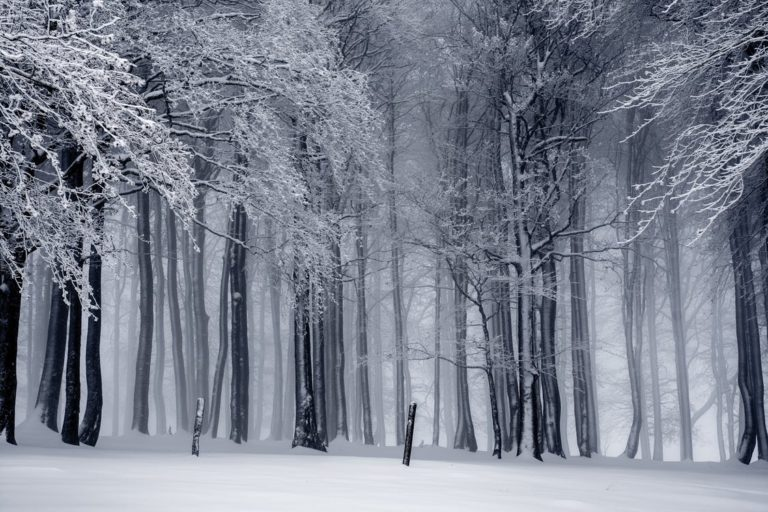 inverno metodo shaolin